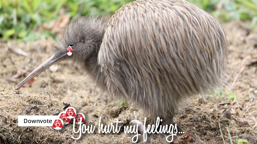 sa_kiwis_feelings.png
